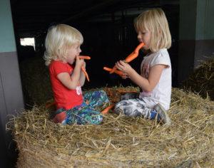 głodni zmian wwalce oto, byporada żywieniowo-dietetyczna dla kobiet wciąży irodziców małych dzieci była dostępna