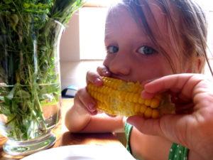 jak ugotować kukurydze